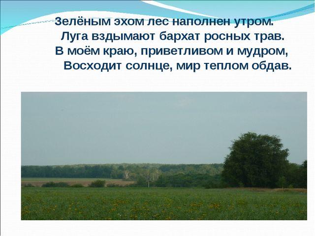 Зелёным эхом лес наполнен утром. Луга вздымают бархат росных трав. В моём к...