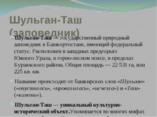 Шульган-Таш (заповедник) Шульган-Таш— государственный природный заповедник в