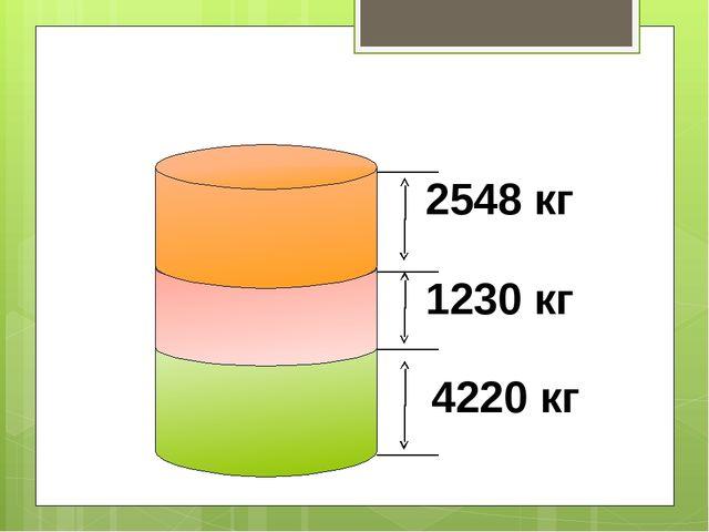 2548 кг 1230 кг 4220 кг