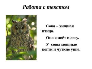 Работа с текстом Сова – хищная птица. Она живёт в лесу. У совы мощные когти и
