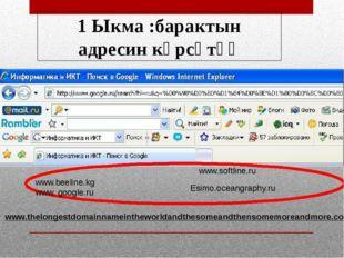 1 Ыкма :барактын адресин көрсөтүү www.beeline.kg www. google.ru www.softline