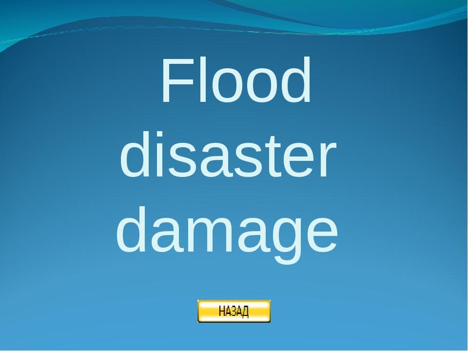 Flood disaster damage
