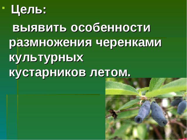 Цель: выявить особенности размножения черенками культурных кустарников летом.