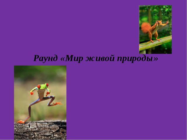 Раунд «Мир живой природы»