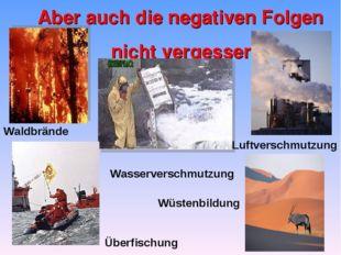 Aber auch die negativen Folgen nicht vergessen Waldbrände Luftverschmutzung W