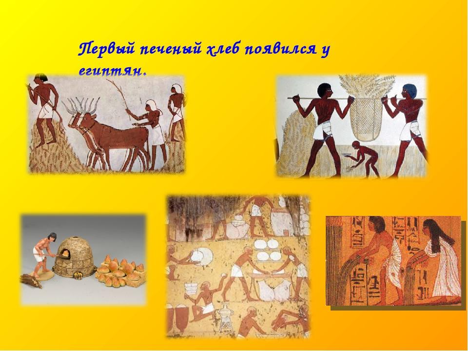 Первый печеный хлеб появился у египтян.