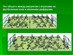 Что общего между рисунком с игроками на футбольном поле и явлением диффузии?
