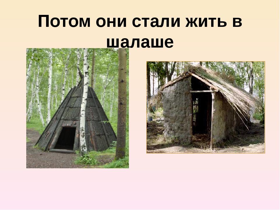 Потом они стали жить в шалаше