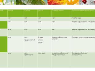 Группа растений Корень Стебель Листья Плоды и семена Особенности жизнедеятел