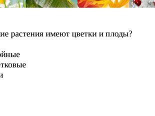 6.Какие растения имеют цветки и плоды? 1.Хвойные 2.Цветковые 3.Мхи