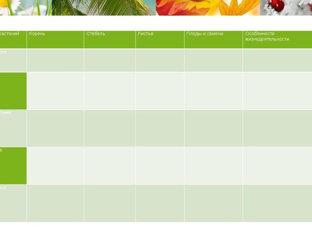 Группа растений Корень Стебель Листья Плоды и семена Особенности жизнедеятел...