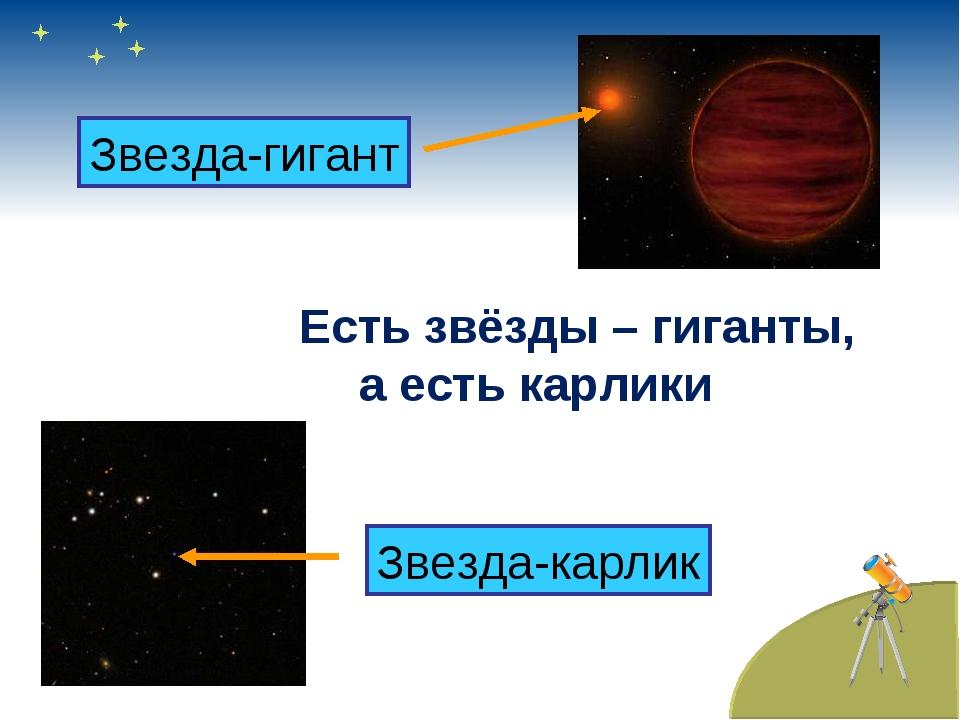 Есть звёзды – гиганты, а есть карлики Звезда-гигант Звезда-карлик