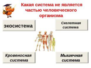 Какая система не является частью человеческого организма экосистема Кровенос