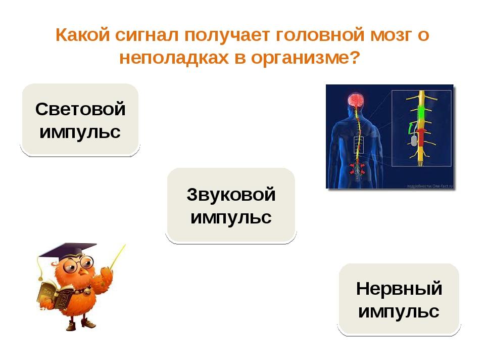 Какой сигнал получает головной мозг о неполадках в организме? Нервный импульс...