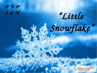 "& E & S & M ""Little Snowflake"""