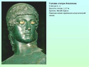 Голова статуи Аполлона 5 век до н. э. Высота статуи: 1,17 м Бронза. Музей Бур
