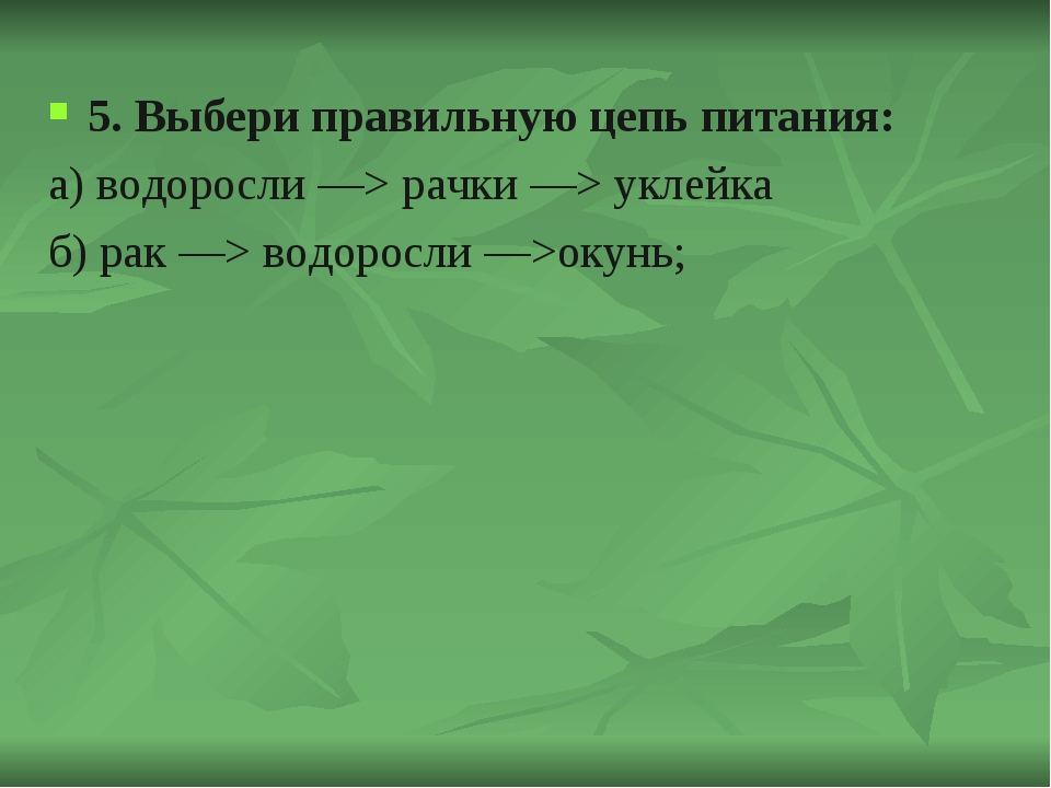 5. Выбери правильную цепь питания: а) водоросли —> рачки —> уклейка б) рак —>...