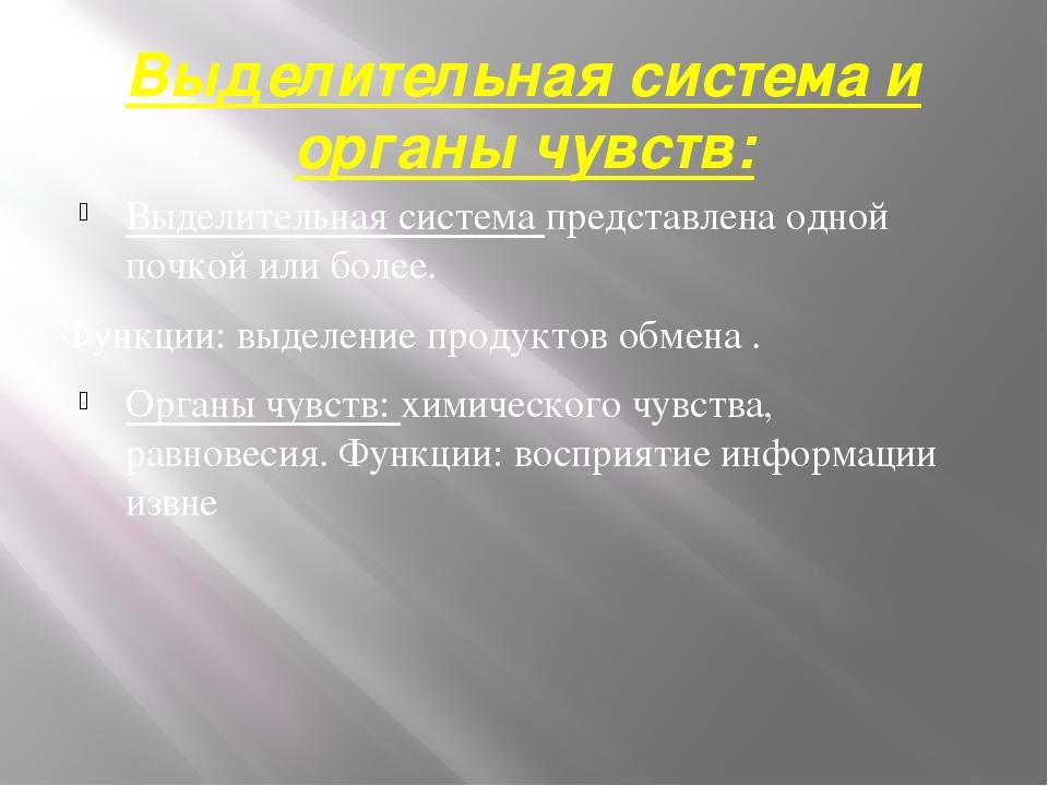 Выделительная система и органы чувств: Выделительная система представлена одн...
