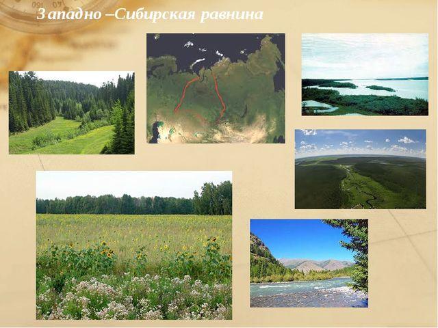 Западно –Сибирская равнина