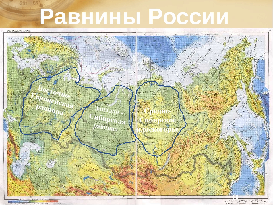 Восточно-Европейская равнина Западно - Сибирская равнина Средне-Сибирское пл...