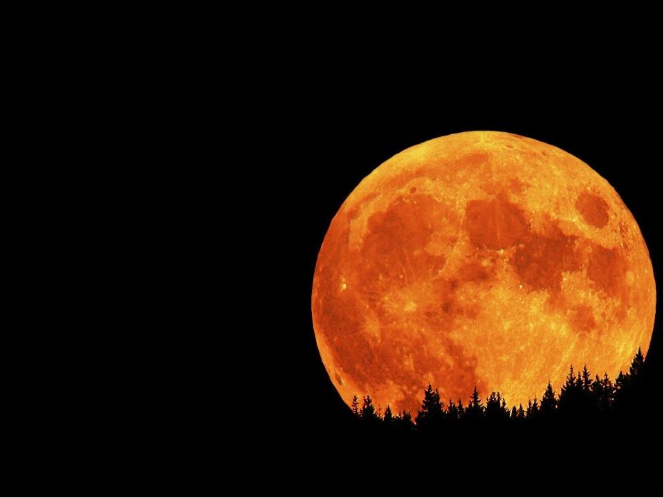 Надо мною апельсин Ночью ясною висит. Да ведь это же она!- Апельсинная ... !
