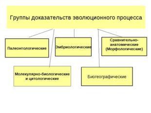 Палеонтологические Эмбриологические Сравнительно- анатомические (Морфологичес