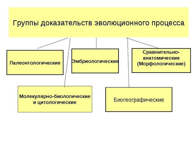 Палеонтологические Эмбриологические Сравнительно- анатомические (Морфологичес...