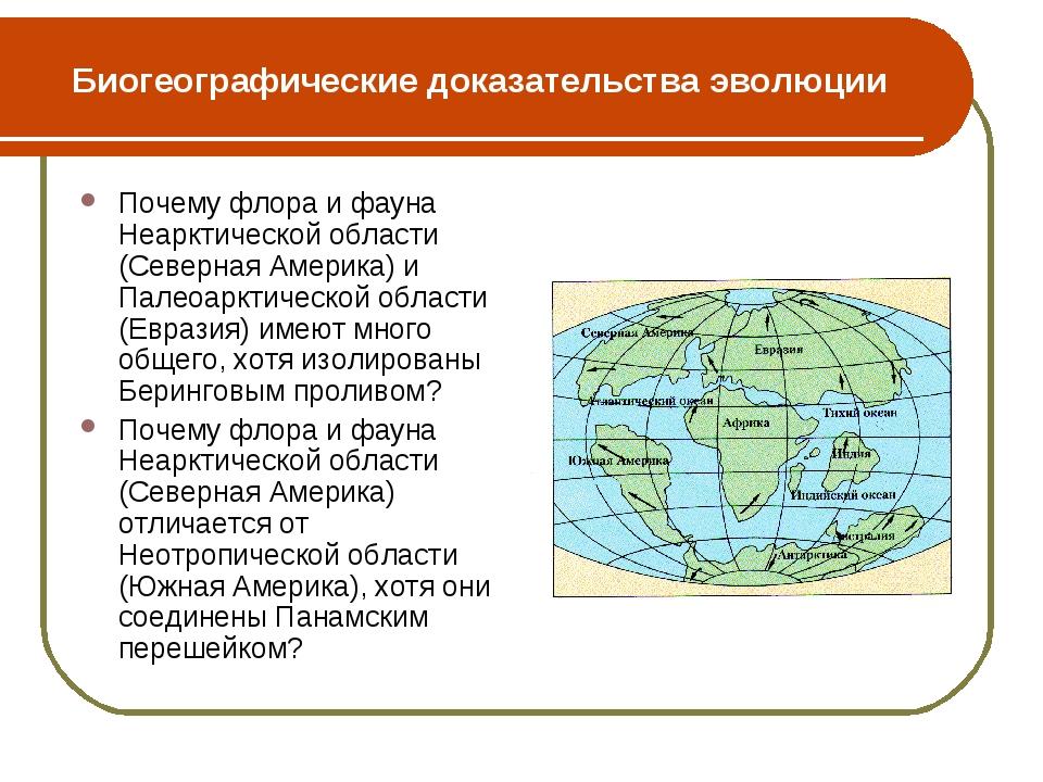 Биогеографические доказательства эволюции Почему флора и фауна Неарктической...