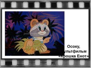 Осоку, мультфильм «Крошка Енот»