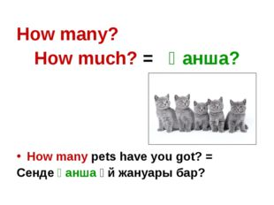 How many? How much? = Қанша? How many pets have you got? = Сенде қанша үй жан