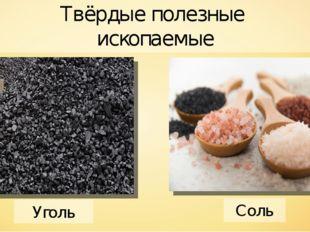 Уголь Соль Твёрдые полезные ископаемые