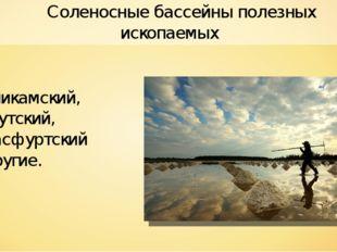 Соленосные бассейны полезных ископаемых Соликамский, Иркутский, Штасфуртский