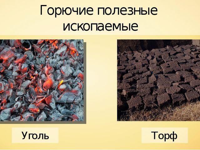 Горючие полезные ископаемые Уголь Торф