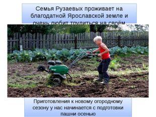 Семья Рузаевых проживает на благодатной Ярославской земле и очень любит труди