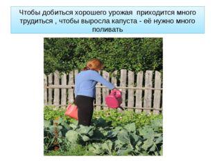 Чтобы добиться хорошего урожая приходится много трудиться , чтобы выросла кап