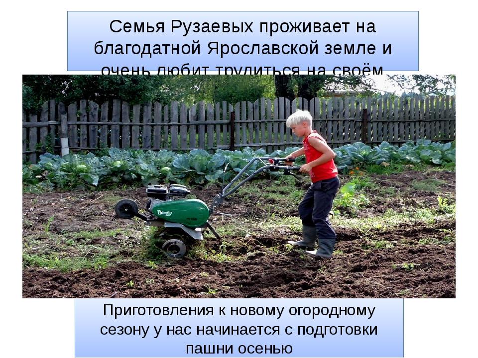 Семья Рузаевых проживает на благодатной Ярославской земле и очень любит труди...