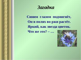 Загадка Синим глазом подмигнёт, Он в полях во ржи растёт. Яркий, как звезда