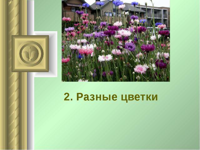 2. Разные цветки .