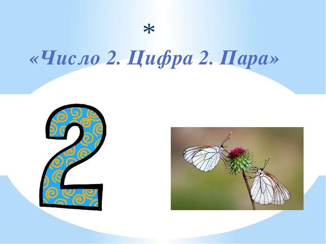 «Число 2. Цифра 2. Пара»