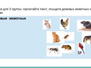 Задание для 3 группы: прочитайте текст, отыщите домовых животных на рисунках