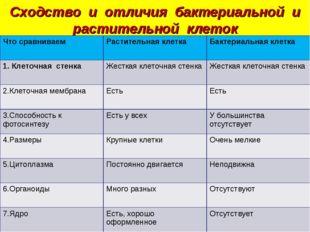 Сходство и отличия бактериальной и растительной клеток Что сравниваемРастите