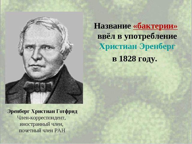 Название «бактерии» ввёл в употребление Христиан Эренберг в 1828 году. Эренб...
