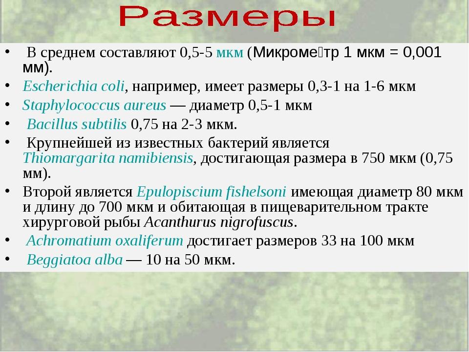 В среднем составляют 0,5-5 мкм (Микроме́тр 1 мкм = 0,001 мм). Escherichia c...