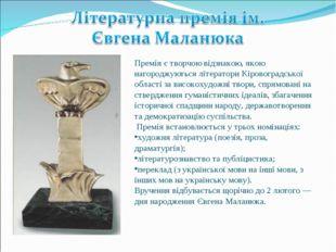 Премія є творчою відзнакою, якою нагороджуються літератори Кіровоградської об