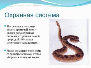 Охранная система Погремушка на конце хвоста гремучей змеи –своего рода охранн