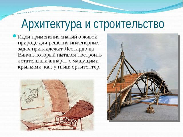 Архитектура и строительство Идеи применения знаний о живой природе для решени...