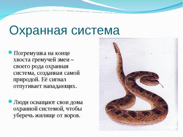Охранная система Погремушка на конце хвоста гремучей змеи –своего рода охранн...