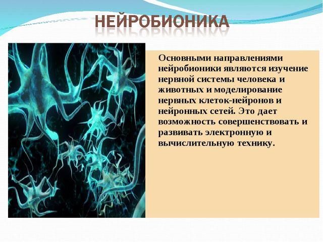 Основными направлениями нейробионики являются изучение нервной системы челов...