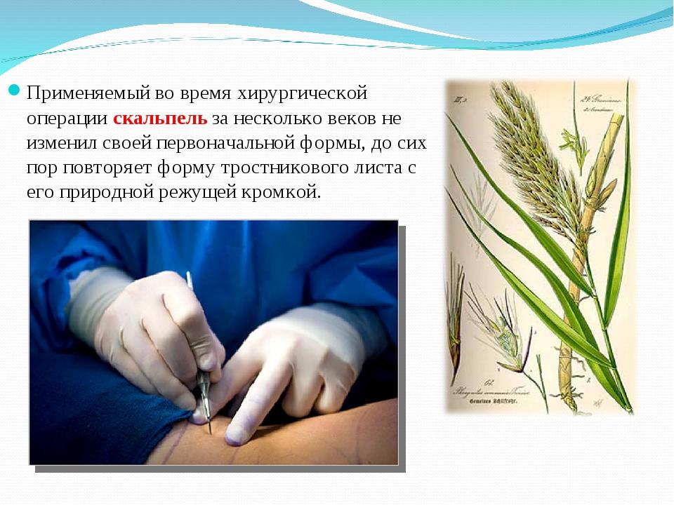 Применяемый во время хирургической операции скальпель за несколько веков не и...