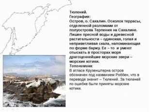 Тюлений. География: Остров, о. Сахалин. Осколок террасы, отделенной разломами